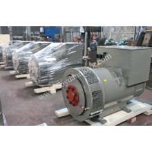 Kopiere Stamford Single S. a. / Doppelte S. a. Drei-Phasen-Brushless-Generator