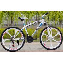 Vélo de montagne une pièce en alliage de magnésium (FP-MTB-ST017)