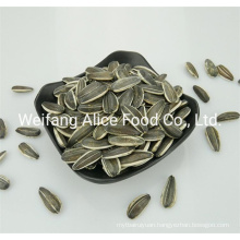 All Kinds of Chinese Seeds Supplier Wholesale Raw Sunflower Seeds 363 361