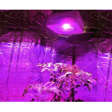 Factory Supply Commercial Plant LED Light for Greenhouse Indoor Hydroponics