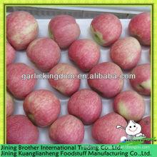 China Apfel roter Stern