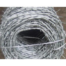 Hot-DIP Galvanized Barbed Wire Factory Price
