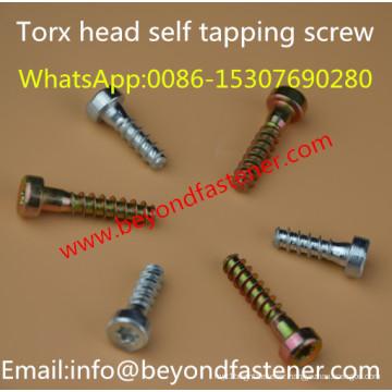 Torx Bolts