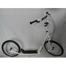 "Scooter de patín con marco de acero de 20 ""(H2020)"