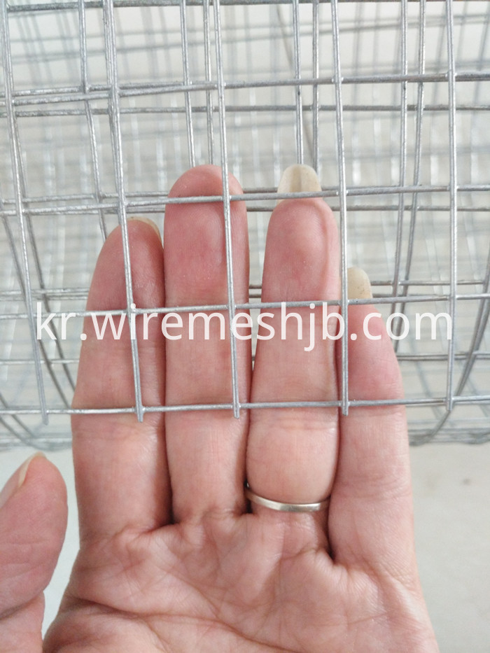3/4 Welded Wire Mesh