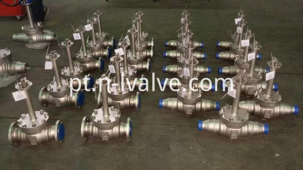 Top Enter Cryogenic Valve