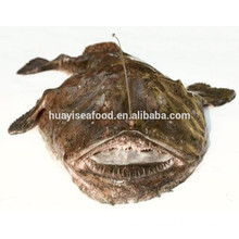 main seafood products frozen monkfish raw fresh material