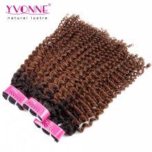 Brazilian Kinky Curly Ombre Hair Extension