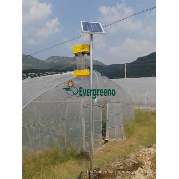 Lámpara Insecticidal solar del precio de fábrica para el hogar o la granja