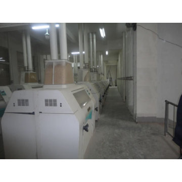 300-1000ton / D Wheat Flour Machine