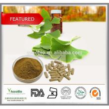 Venta al por mayor de extracto puro de Ginkgo Biloba, extracto de Ginkgo Biloba en polvo, extracto de Ginkgo Biloba