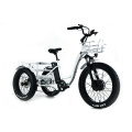 XY-Trio Deluxe adult electric tricycle for sale