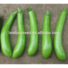 ME051 Qingjiao ранней зрелости зеленый гибридный длинные семена баклажан