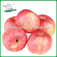 New crop fresh Fuji Apple from shandong