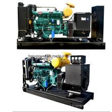 Générateur diesel de type ouvert 50kw avec Weifang Tianhe pour usage domestique et commercial