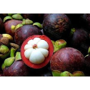 Good And Sweet  Mangostana