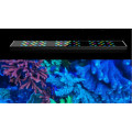 Coral Reef Full Spectrum Lighting LED luz para acuario