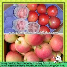 China 150-198 red gala apple