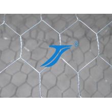 Galvanized Hexagonal Wire Mesh / Chicken Wire Mesh