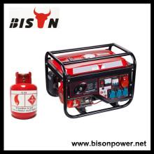 BISON (CHINA) Gerar Eletricidade For Home Power Standby Metano Gerador Elétrico