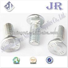 flat heat with square neck BOLT Grade 8.8 zinc TS16949 ISO9001