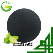Humic Acid 70% Powder / Fertilizante orgánico granular