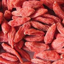 Les baies de Goji séchées rouges biologiques (Wolfberry) The King of Ningxia