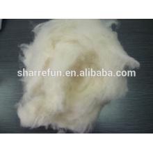Fibres de laine de mouton chinois cardée et cardée