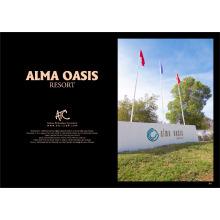 PROYECTO ATC - ALMA OASIS RESORT