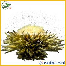 Chá verde de florescência de Fei Xue Ying Chun