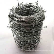 Amazon Hot China Expert Supplier of Barbed Wire Fencing