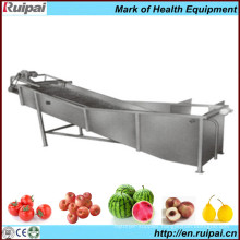 Wave/Bubble Vegetable and Fruit Cleaner/Washer