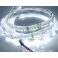 Color blanco lado emitiendo luz de tira del LED SMD335 LED Strip