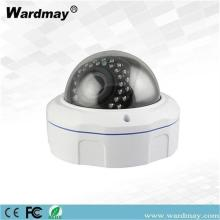 H.265 2.0MP CCTV Pengawasan IR Dome IP Camera