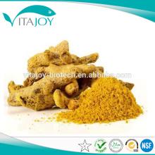 Hot Sale Turmeric Root Extract 95% Curcumin HPLC