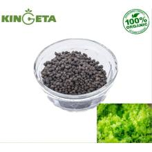 Surface fertilizer Organic Fertilizer for folwers