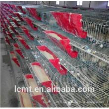 Rendement ultra-élevé des équipements d'élevage en cage de caille.