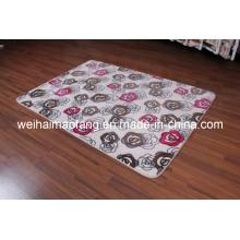 Lujo visón Raschel decoración Shaggy alfombra (NMQ-CPT008)