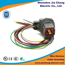 Custom Molex Wire Cable Assembly Factory Made in China