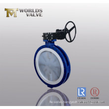 PFA Full Lined Butterfly Valve with CE ISO Wras Approved (D341X-10/16)