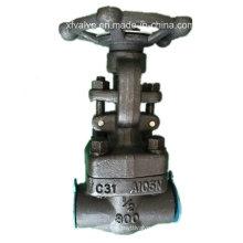 API602 800lb forgé en acier A105 fil NPT porte vanne