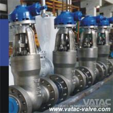 Válvula de compuerta sellada de presión de alta presión (Válvula de compuerta PSB)