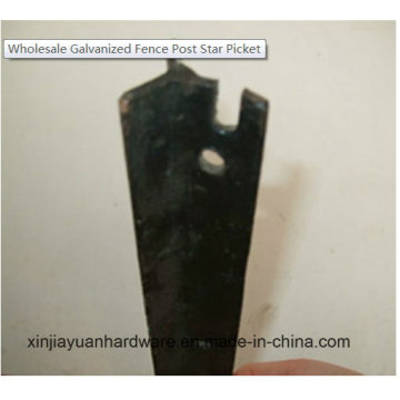 Black Betume Star Picket / Y Fence Post for Sale