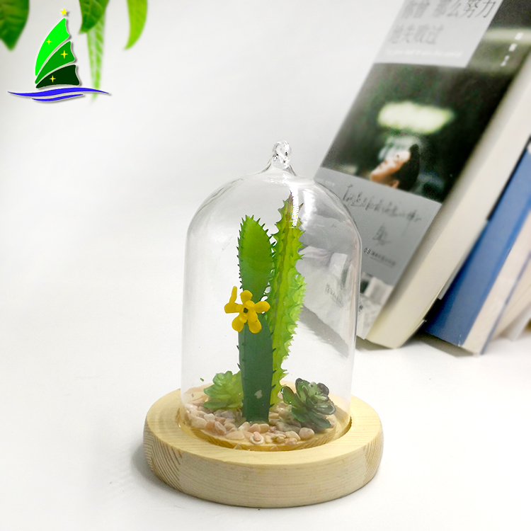 Wood Base Indoor Plant Glass Terrarium