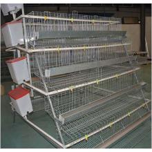 Stainless steel nipple drinker  broiler chicks rearing cage