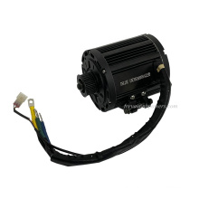 QS Mid motor QS 138 72V 4000w mid drive motor for electric motorcycle