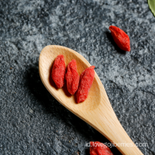 Chinese Traditional Herb Wolfberry Dari Ningxia