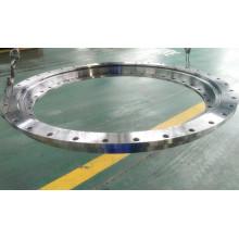 Light Series Flange Type Slewing Ring 110-1300