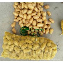 New Crop Vegetables Fresh Potatoes