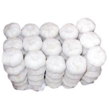 Alta Qualidade Nova Colheita Puro Branco Alho Branco